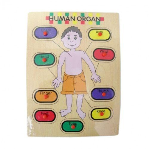 UU28 Drewniana zabawka edukacyjna człowiek PUZZLE